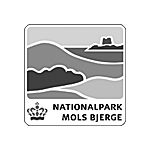 augmented_reality_4dscan_AR_denmark_nationalpark_mols_bjerge